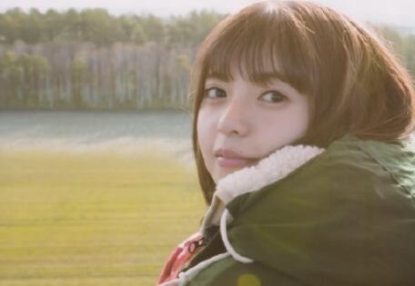 向日葵视频app又一次火了 在线播放是意外走红吗?