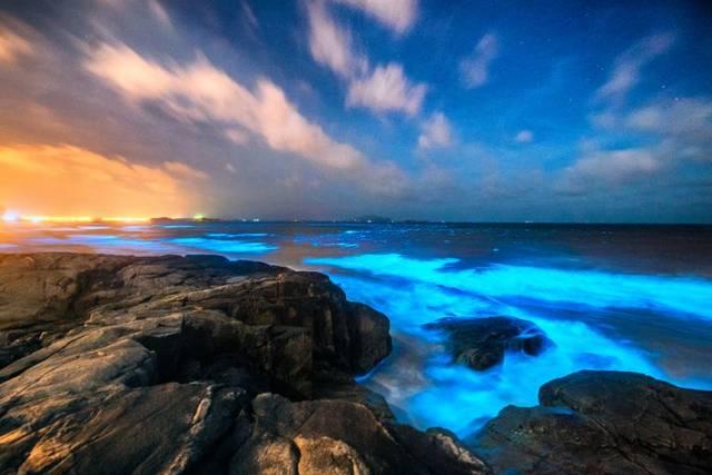 福建蓝眼泪海滩在哪里 什么时候会出现能看到?